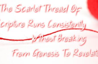 Scarlet Thread Heavenly Ministry